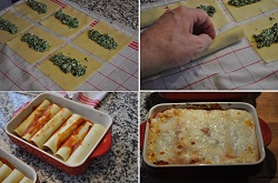 Cannelloni of lean meat